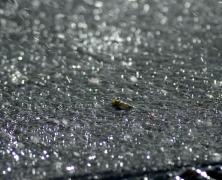 Rain Splashes Sparkling on Pavement