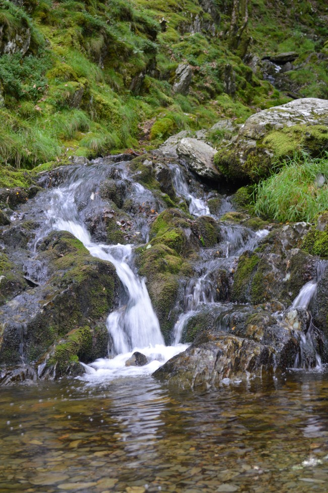 Water Falling on Rocks with Green Grass