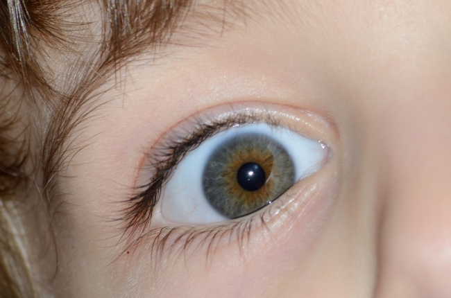 Macro of a Child's Eye