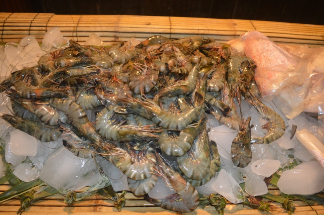 Green-Tinted Prawns on an Ice Bed