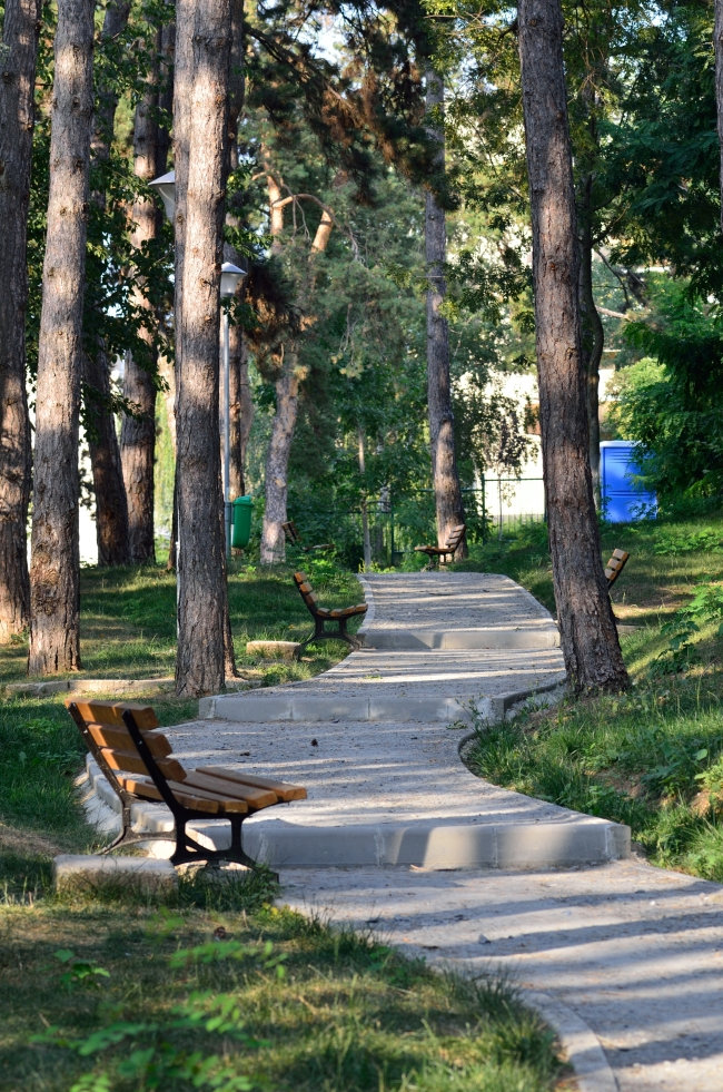 Public Park with Paved Alley and Benches