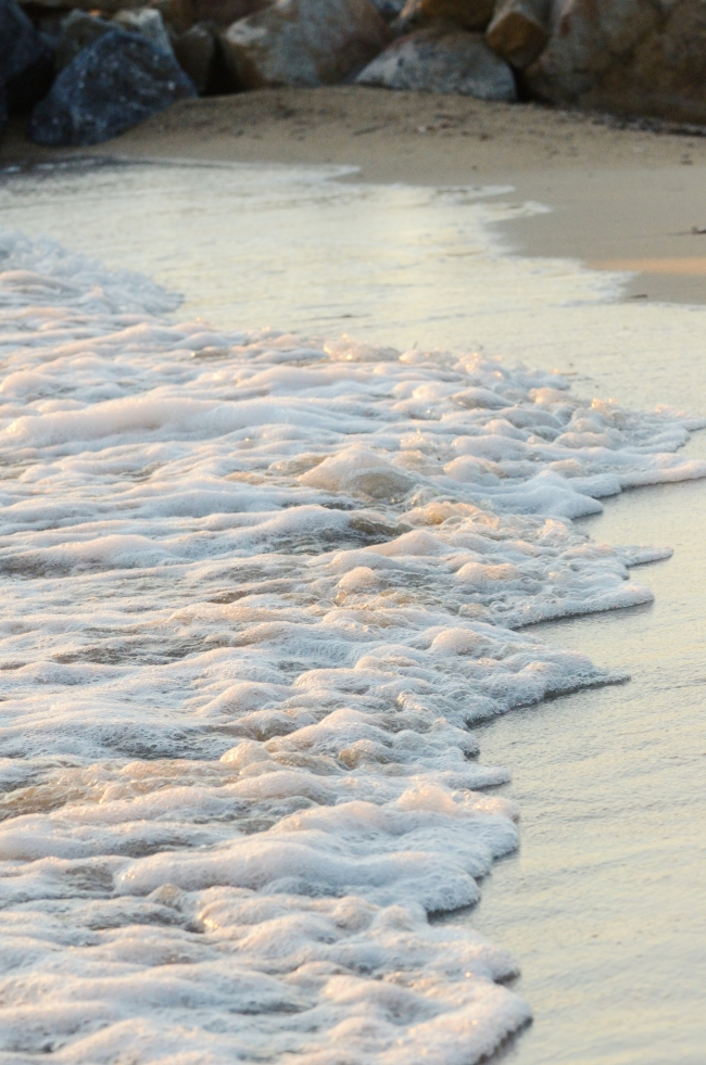 Seashore Washed by Pink and White Waves