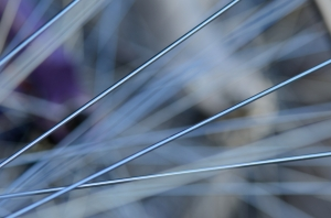 Wheel Spokes in Focus Close-Up