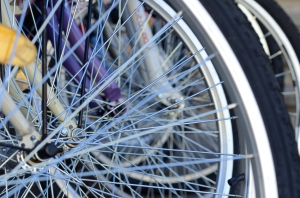 A Few Bicycle Wheel Spokes Closeup