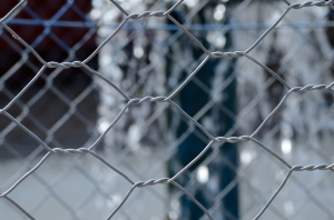 Chain-Link Fence in Close Focus