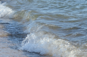 Transparent Wave at the Seaside