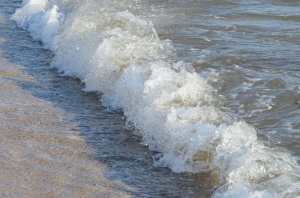 Wave at the Seaside with Foam in Sunlight