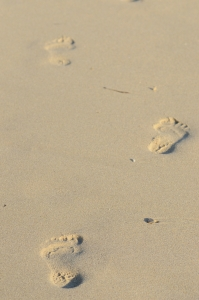 Footpaths on Golden Beach Sand