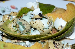 Food Waste with Egg Shells and Avocado