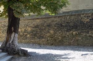 Old Stone Wall Enclosing Patio