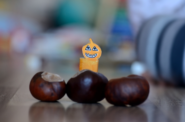 Paper Doll Hiding Behind Large Chestnuts