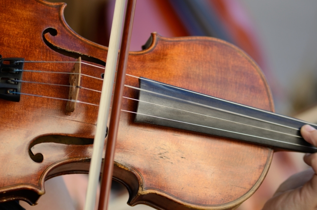 Fiddle's Strings in the Hand of an Artist