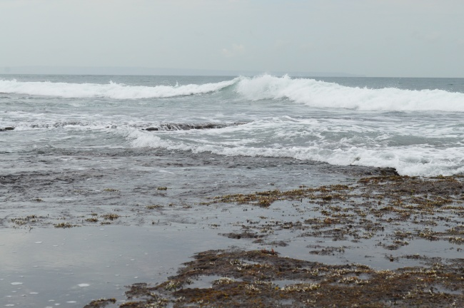 Strong Waves by the Seashore on a Cloudy Day