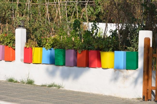 Flower Pots on Concrete in the Sunlight