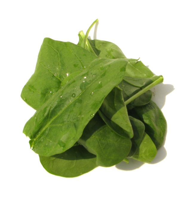 Fresh Spinach Leaves with Water