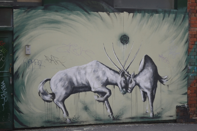 Fighting Horned Animals Graffiti