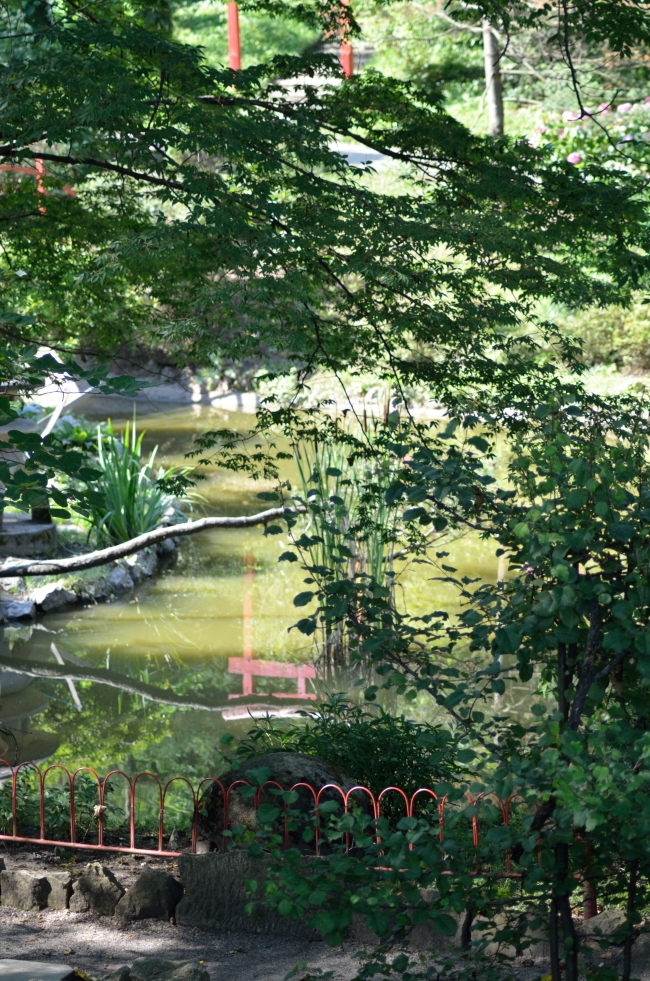 A Lake in a Japanese Garden with Vegetation