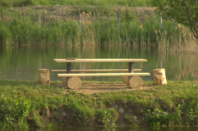 Bench and Table on Green Grass near a Lake