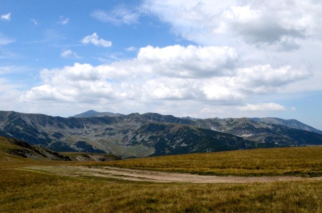 Mountain Path Through Soft Grass