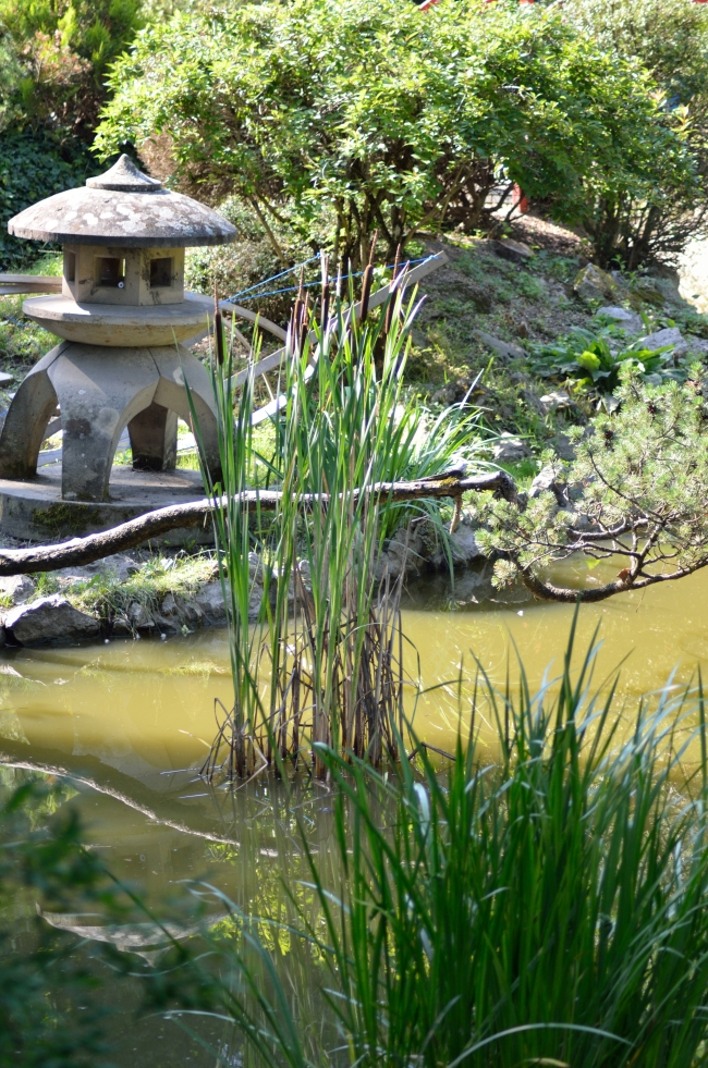 Ornaments in a Traditional Japanese Garden