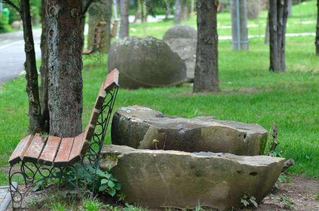 Bench near Trees and Stones