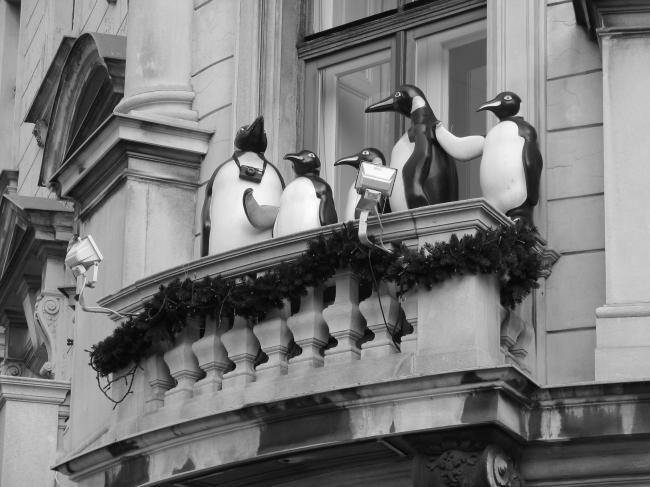 Balcony in Vienna