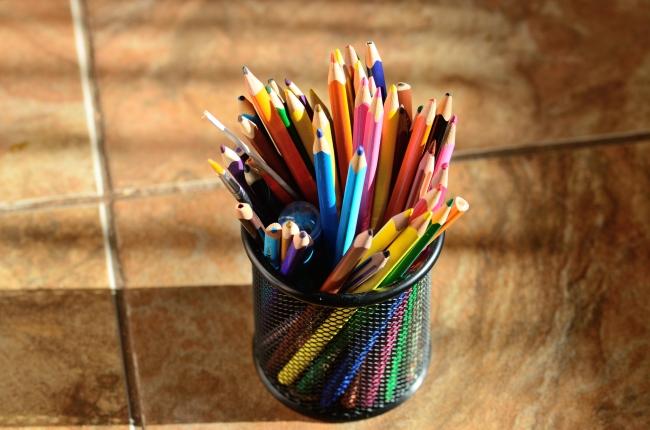 Coloured Pencils in Pencil Case