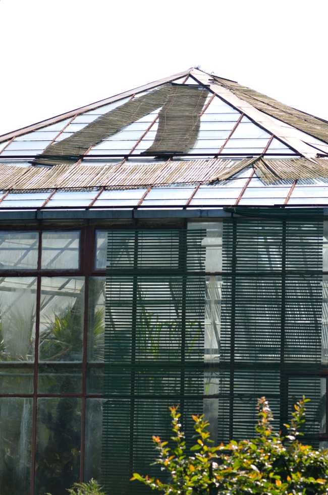 Greenhouse for Exotic Plants
