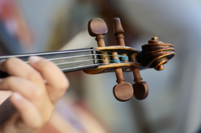 Violin Scroll and Tuning Pegs